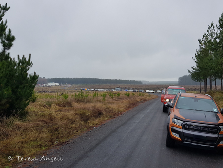 Convoy to the forest
